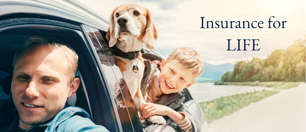 Father driving with son and dog in back seat